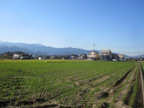 建築のタイミング=ご縁(愛媛県 北欧住宅 フォレストクルーログハウス)