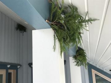 Block swallows !! ツバメの巣作り対策 軒先の深い木の家は雨宿りできる良い家