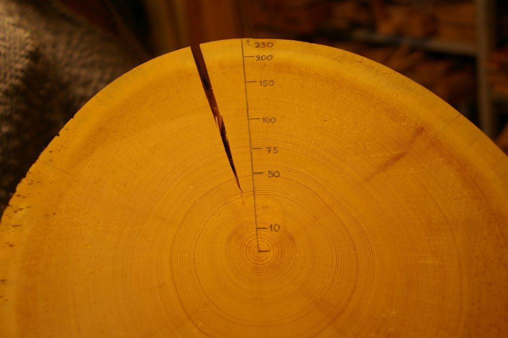 木造の建物が蓄えているCO2量は? 脱炭素の効果をログハウスで検証